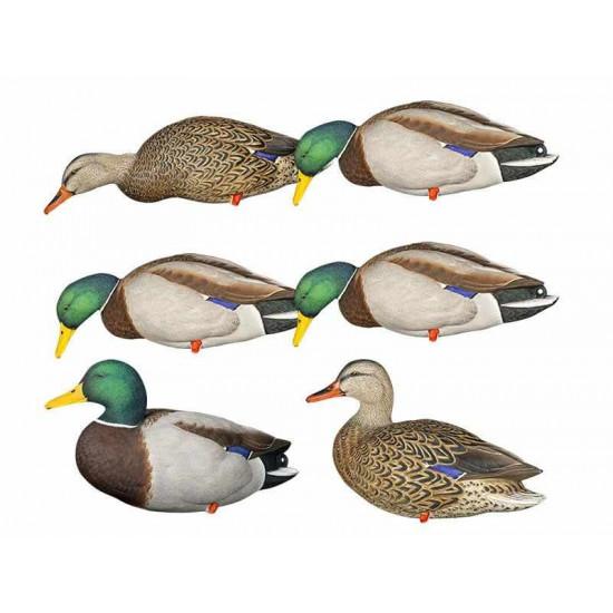 Formes de colvert sur pattes AvianX