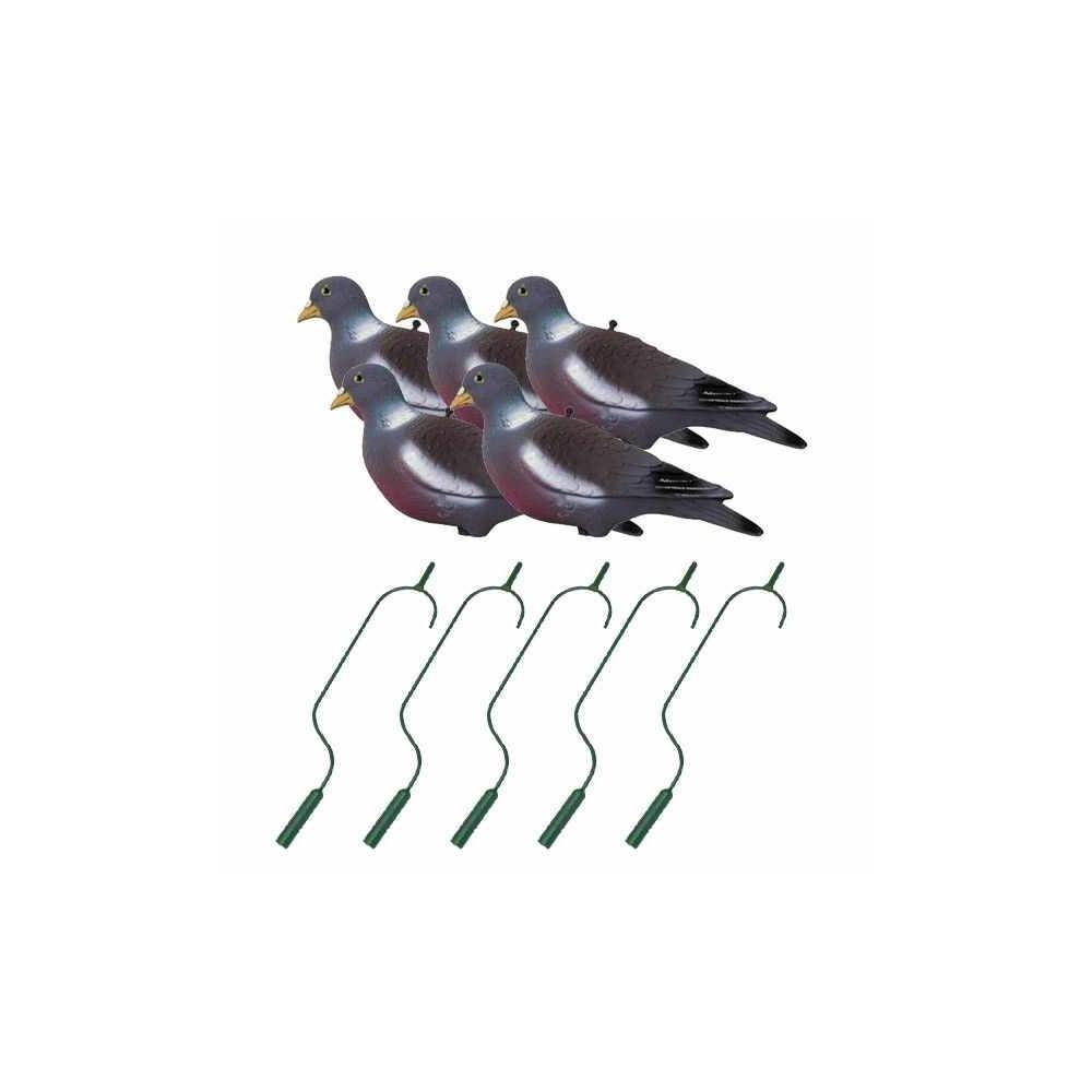 Pack irrésistible pigeon