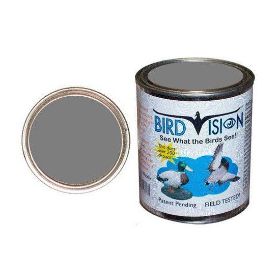 Peinture Bird Vision - Gris pigeon