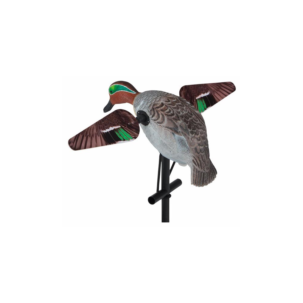 Sarcelle à ailes tournantes Lucky Duck
