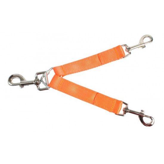 Accouple pour deux chiens orange