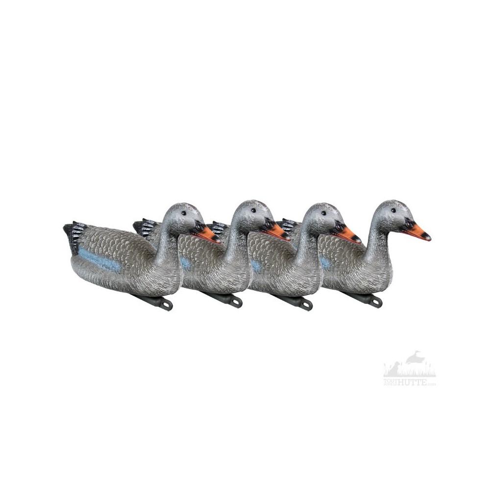 Pack 4 formes d'oie cendrée flottantes