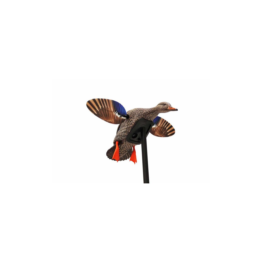 Cane colvert à ailes tournantes Mini Mallard Elite Series Mojo