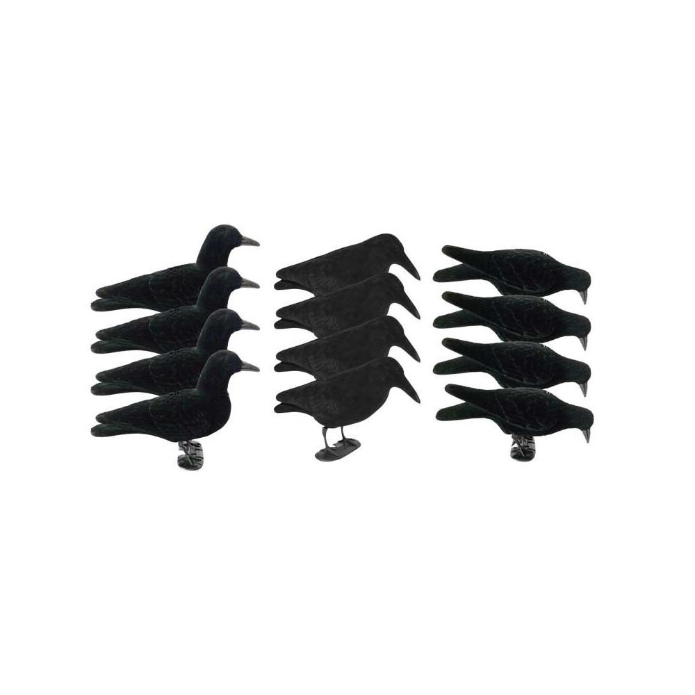 Pack attelage corbeau 2.0