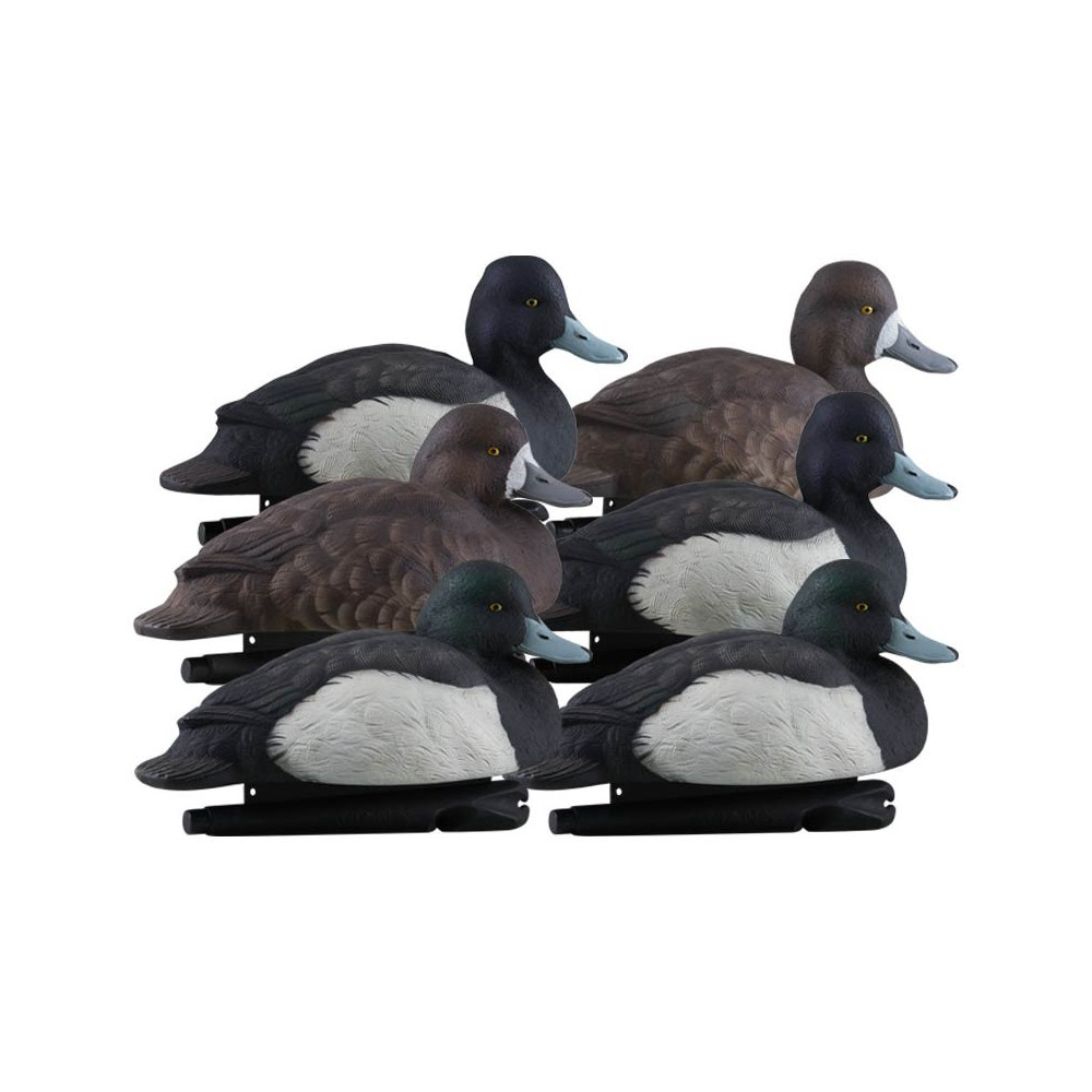 Formes de milouin AvianX pack mixte