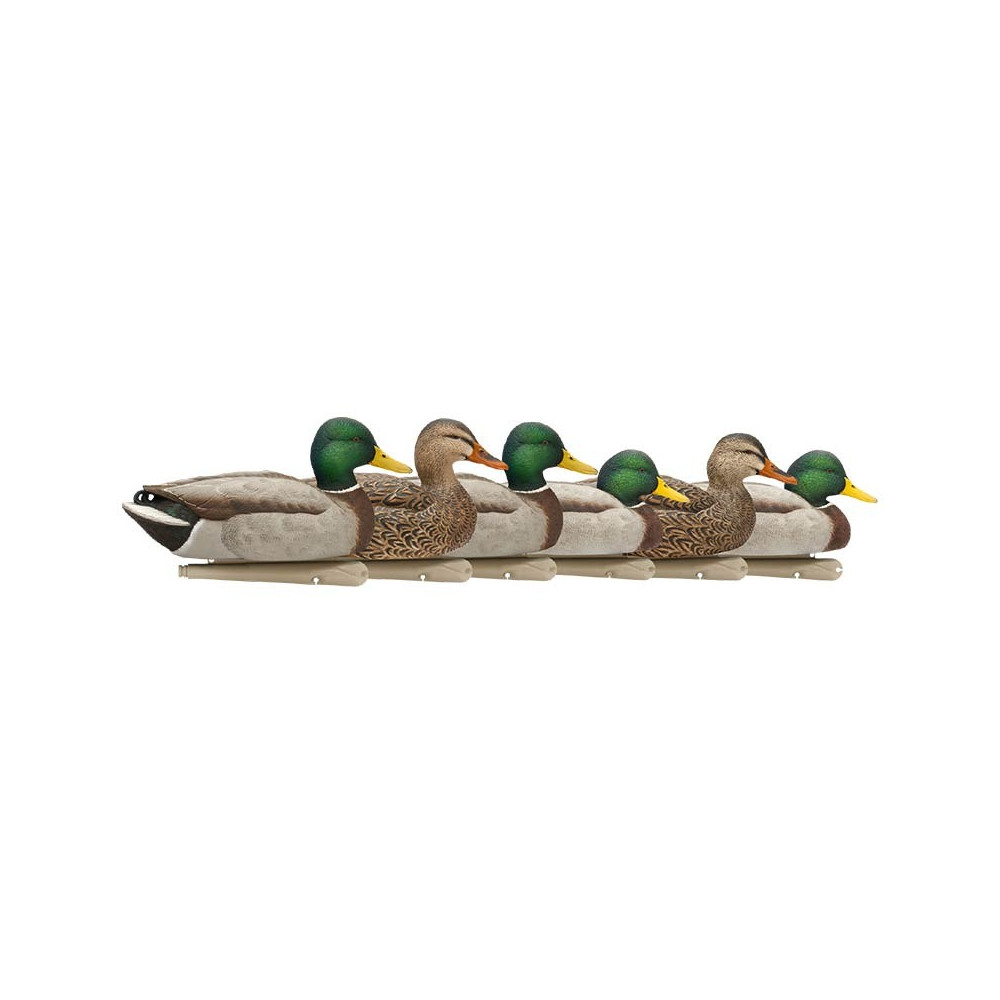 Formes de colvert AvianX open water HD
