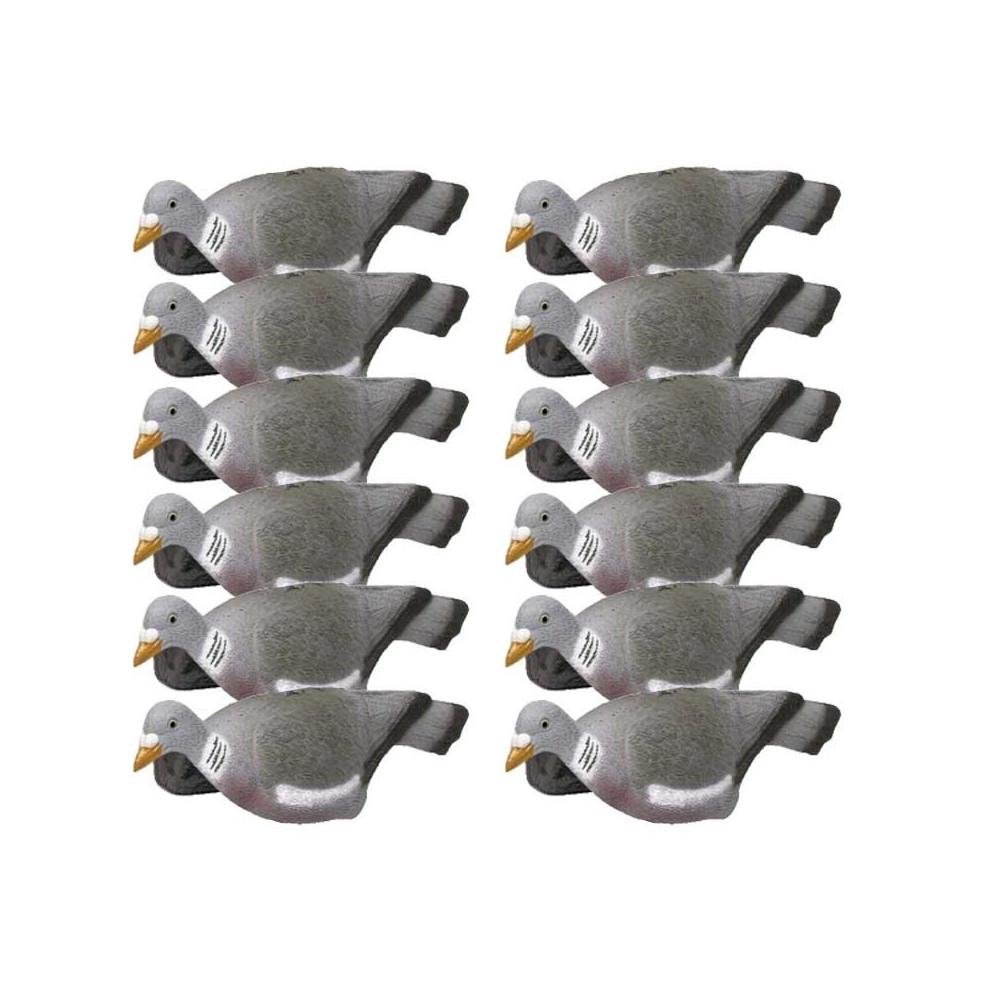 12 formes de pigeon coquille