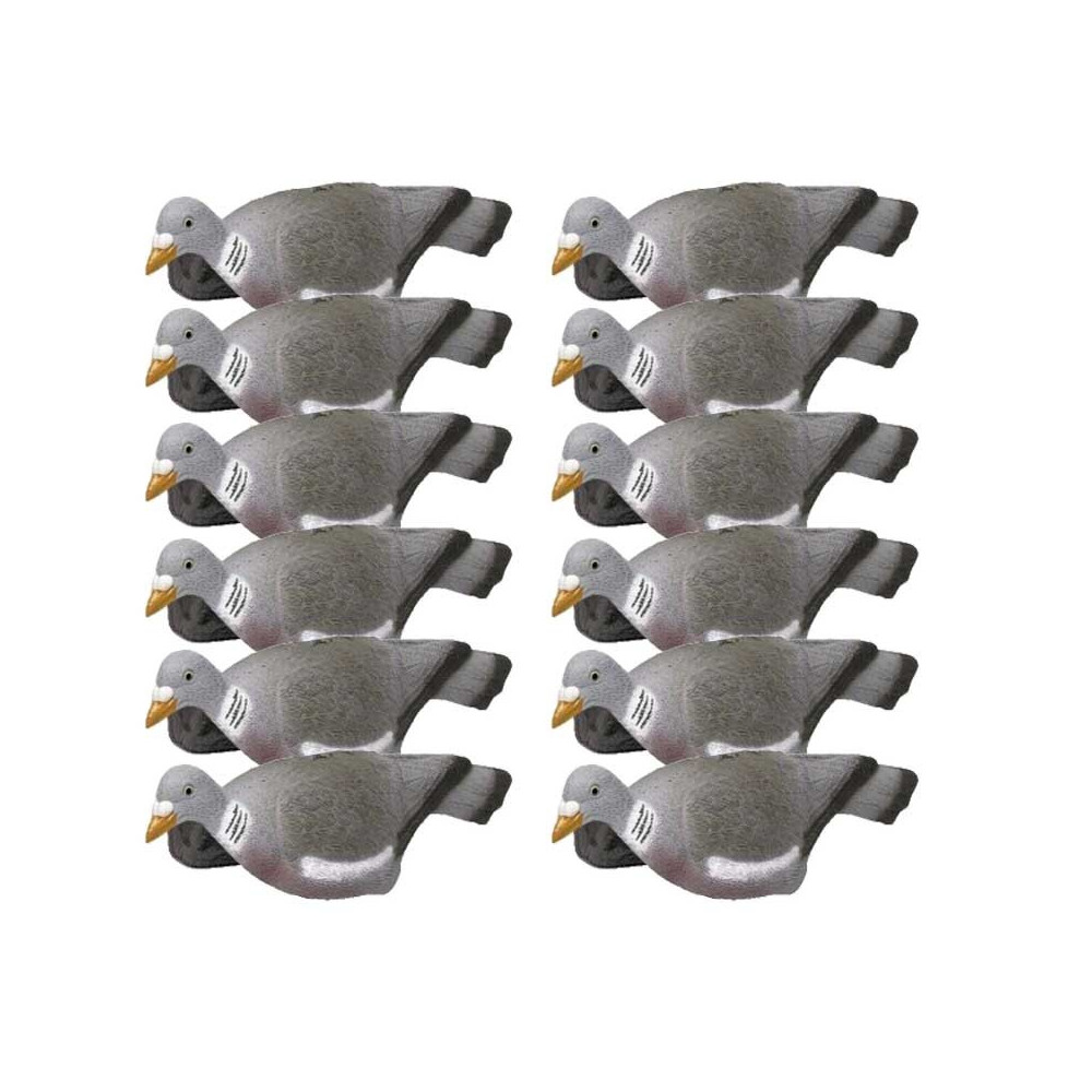 Formes de pigeon coquille x12