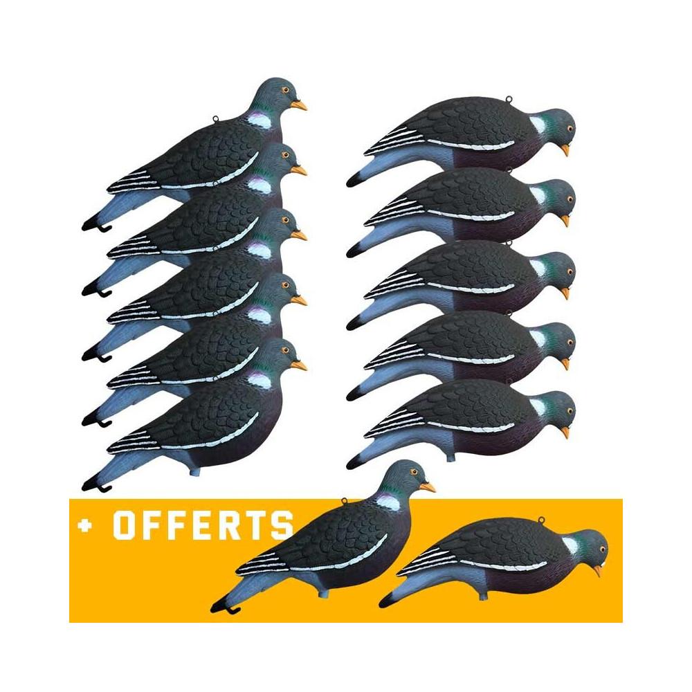 Formes Vision Pigeon HD UV x10 + 2 offertes