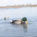 Mojo Duck Rippler