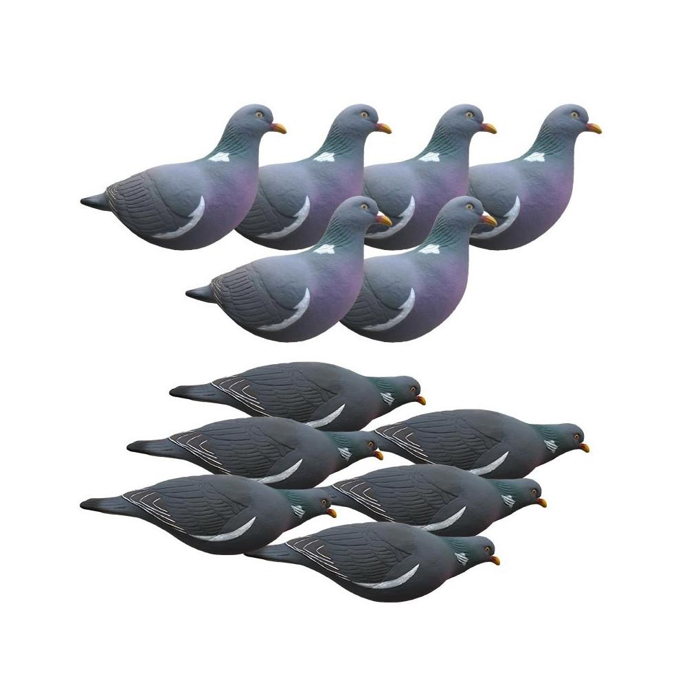 Formes de pigeon Last Pass x12