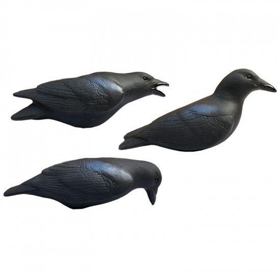 Formes de corbeaux actives magnums x3