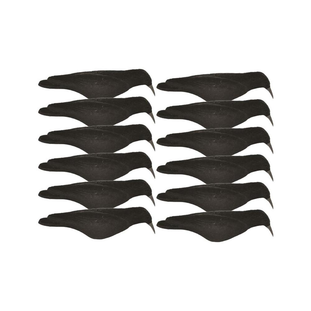 Coquille de corbeau floquée x12