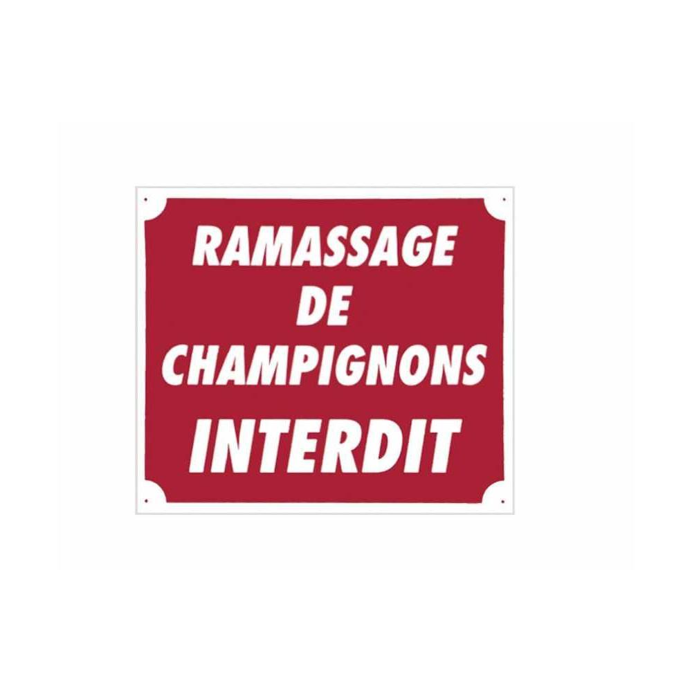 Ramassage De Champignons Interdit