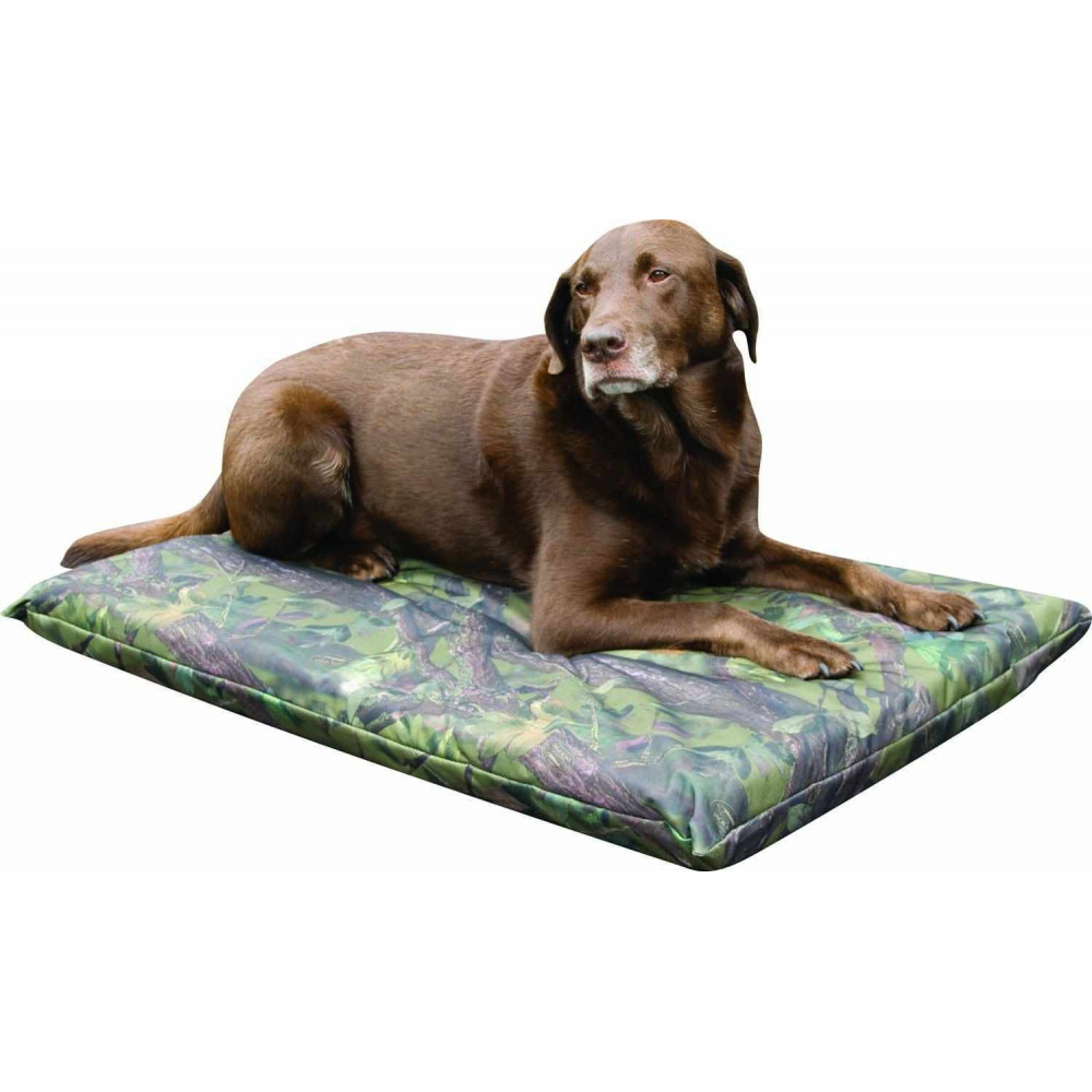Housse de matelas grande taille pour chien