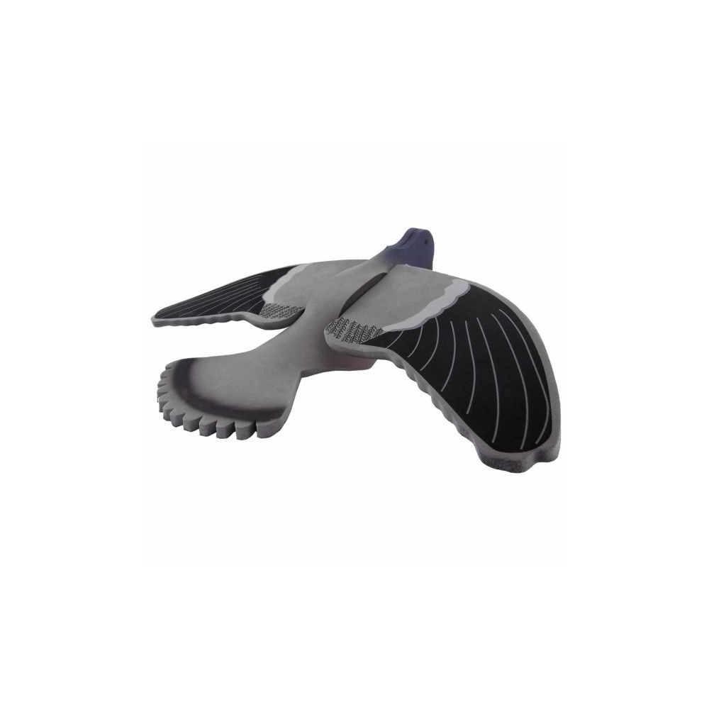 Appelant pigeon mousse en vol